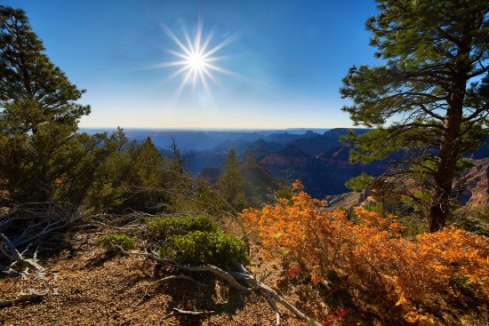 Grand Canyon in the Fall